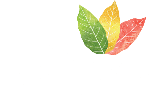 The Wellbeing Affect